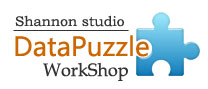 DataPuzzle Workshop